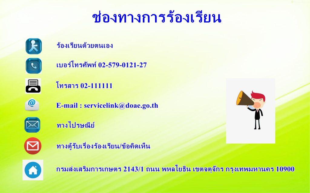 background-green1355-1024x640